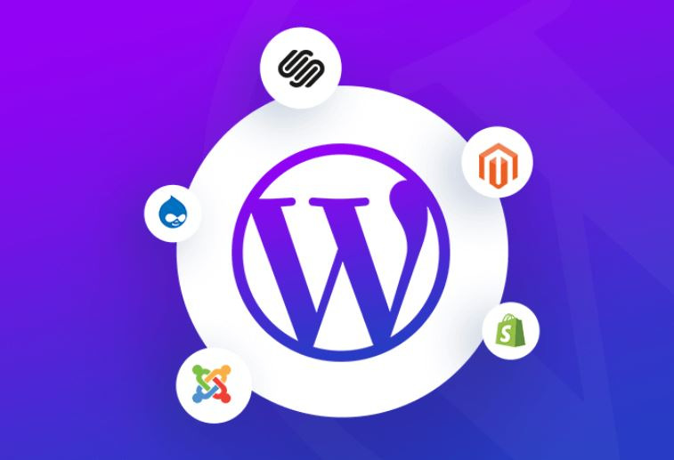 5 Reasons Why You Should Choose WordPress over other CMS